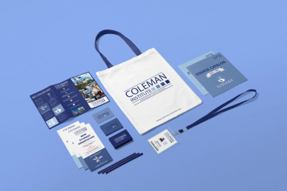 Coleman Institute collateral